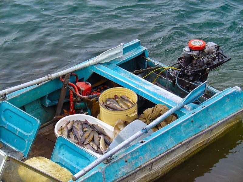 Litet motoriskt fartyg som svävar på flodvatten med skyttlar som är fulla av ny fisk Fiskare fick det bra låset från utomhus- fri royaltyfri foto