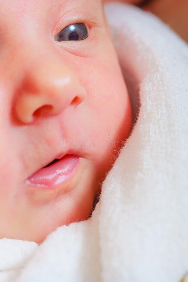 Litet nyfött ligga i stillhet i filt royaltyfria foton