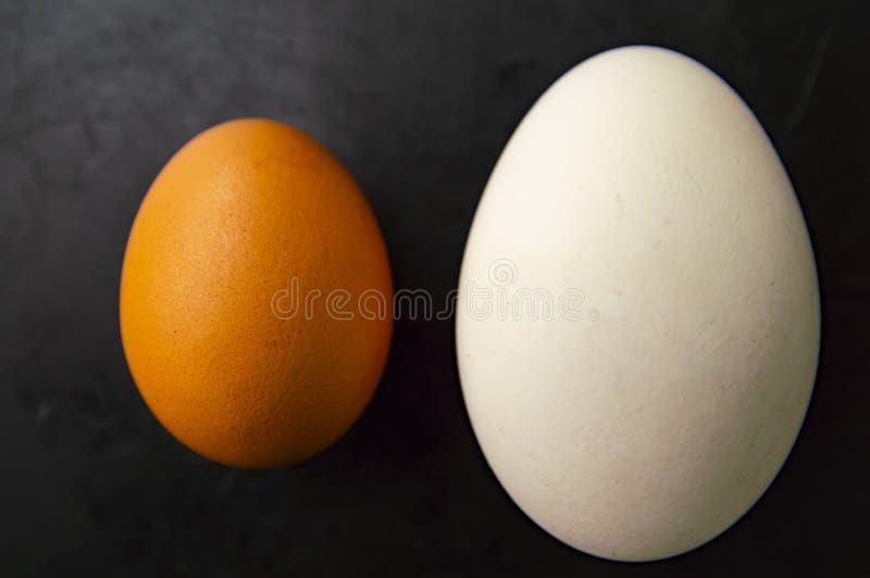 Litet och stort ägg på en svart bakgrund royaltyfri foto