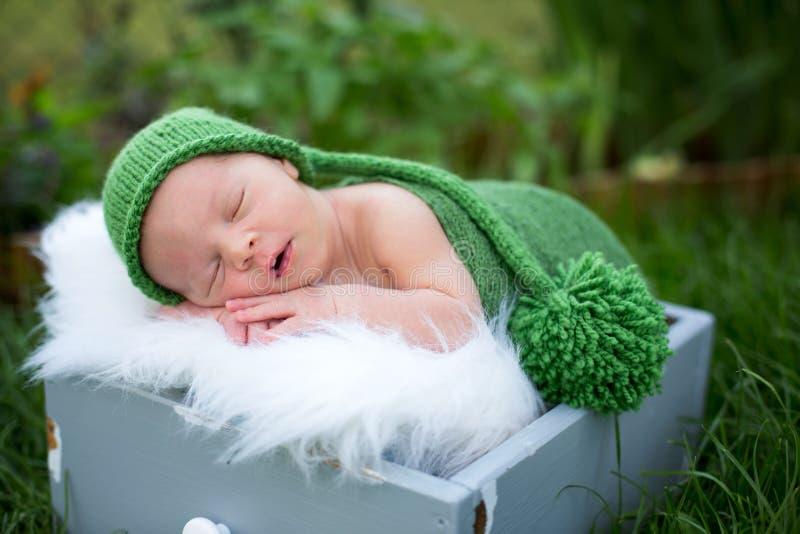 Litet sött nyfött behandla som ett barn pojken och att sova i spjällåda med sjalen och H fotografering för bildbyråer