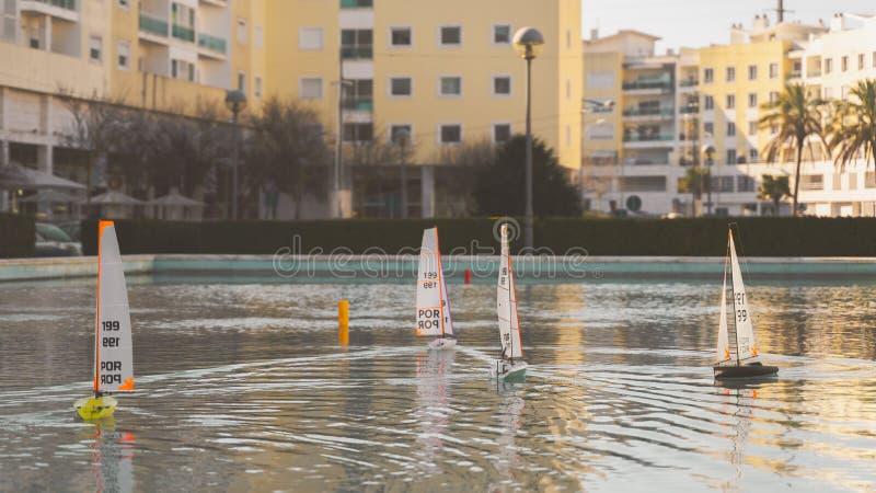 Litet segla leksakfartyglopp Det mini- fjärrstyrda dammet seglar fartyg på solnedgången royaltyfri bild