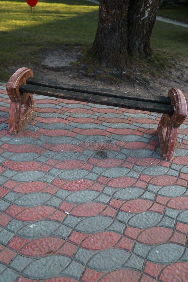 Litet stadsbänkanseende på en trottoar nära ett träd royaltyfri bild