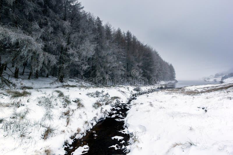 Litet strömma spring till och med en capped snow landskap fotografering för bildbyråer