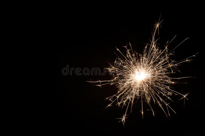 Litet tomtebloss för nytt år på svart bakgrund royaltyfria bilder