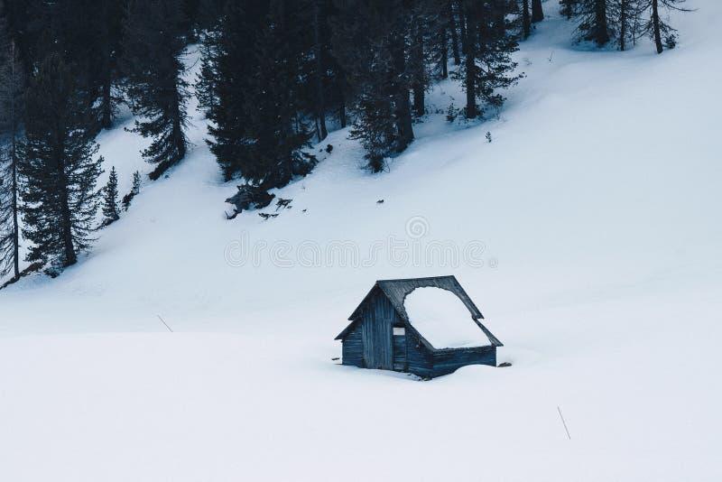 Litet trähandbuilt hus i en skog som täckas i snö på en snöig kulle arkivfoton