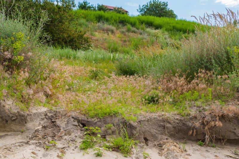 Litet trähus på en lutning för grön kulle arkivbilder