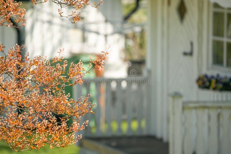 litet vitt träsommarhus i trädgården med grönt gräs och träd på bakgrunden royaltyfri foto