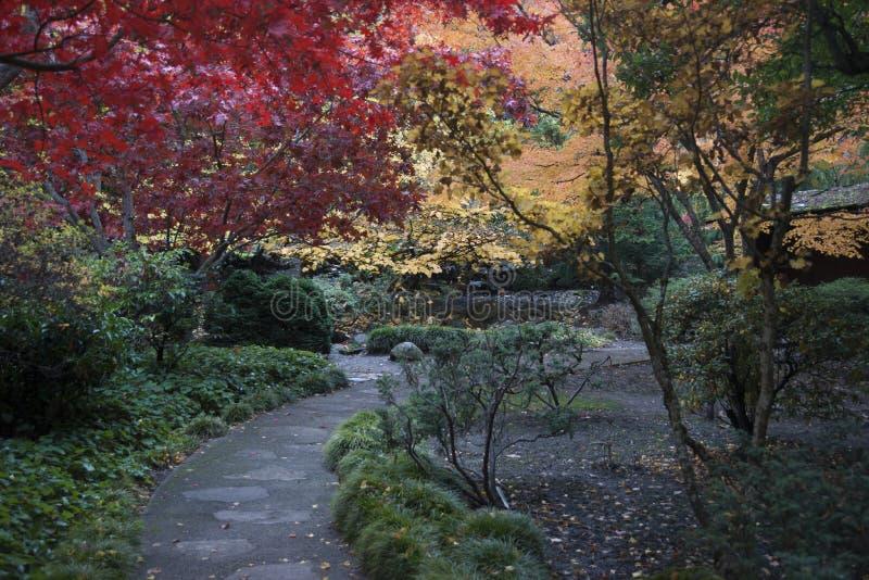 Download Lithia Park Ashland, Oregon Stock Afbeelding - Afbeelding bestaande uit centraal, teken: 54083821