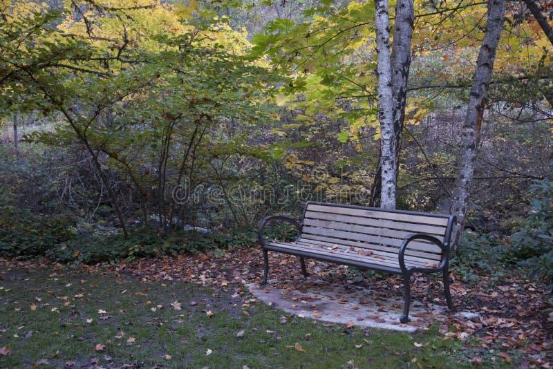 Download Lithia Park Ashland, Oregon Stock Afbeelding - Afbeelding bestaande uit bank, mount: 54084105