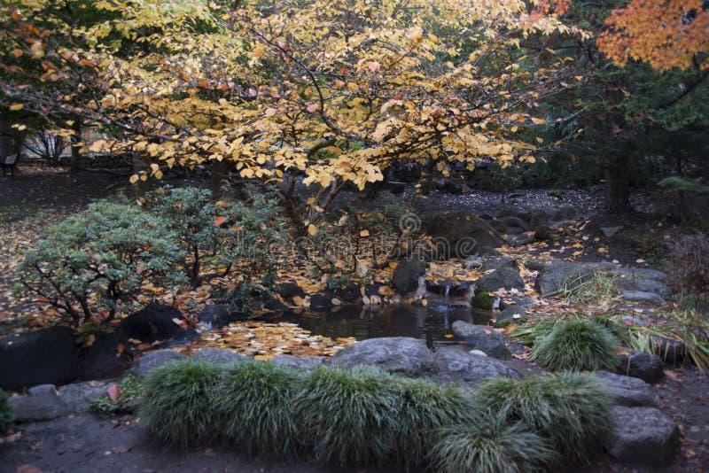 Lithia Park Ashland, Oregon stock photography