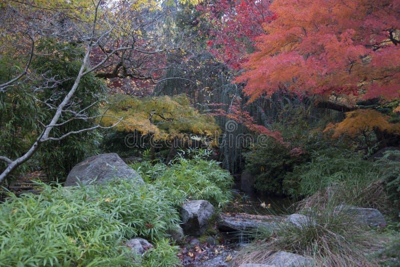 Lithia Park Ashland, Oregon royalty free stock image