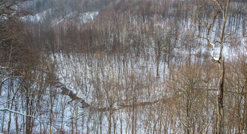 Lithianian kleine rivier Duksta royalty-vrije stock foto