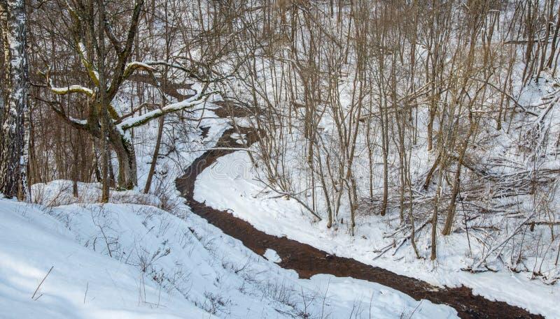 Lithianian kleine rivier Duksta stock foto
