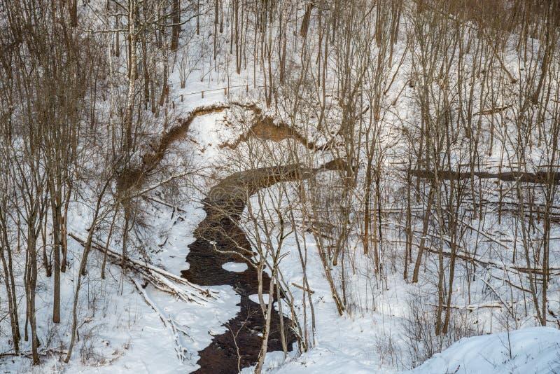 Lithianian kleine rivier Duksta stock afbeeldingen