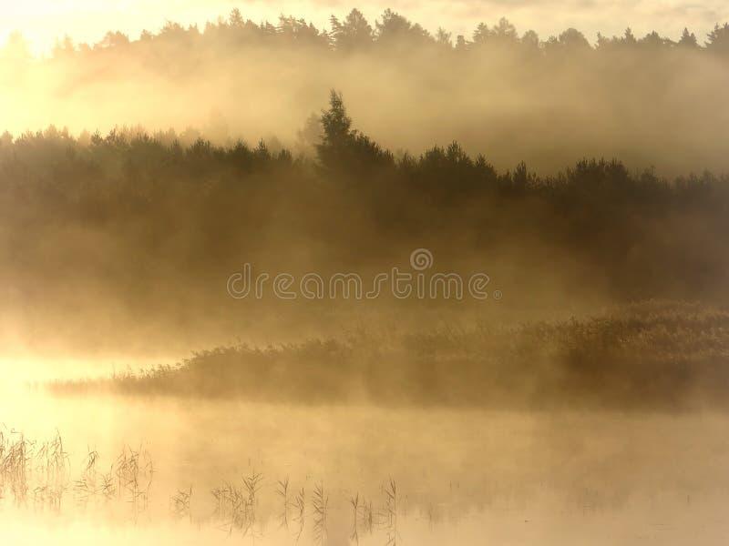 Lithuania,Kurtuvenai regional park .Nice view,light,colors,mood. royalty free stock photo