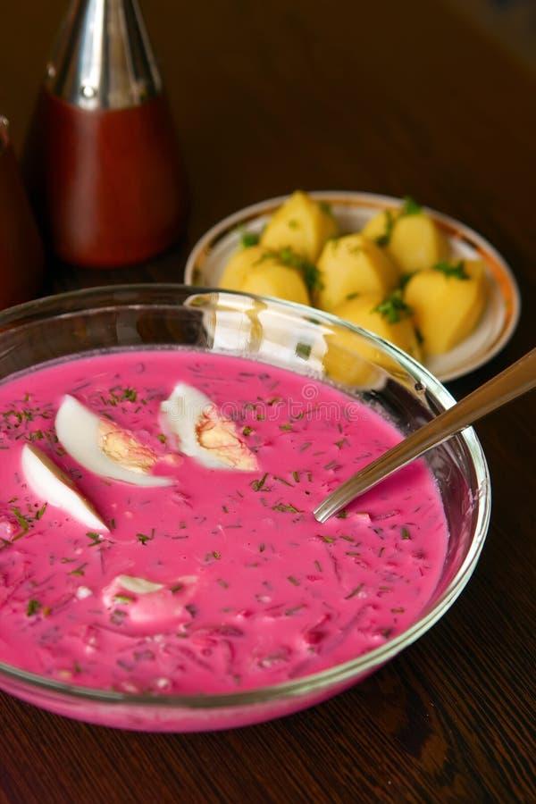 lithuanian borscht холодный стоковые фотографии rf
