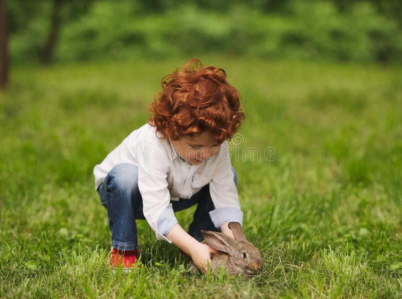 Litle男孩戏剧用兔子在公园 免版税库存图片