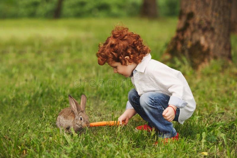 Litle男孩戏剧用兔子在公园 免版税库存照片