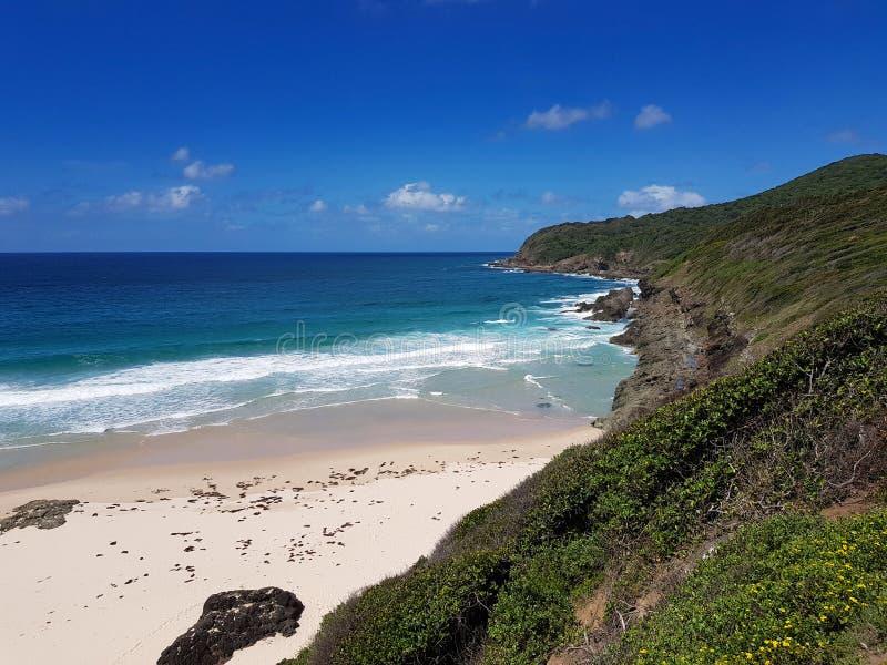 Litoral australiano Burgess Beach fotos de stock royalty free