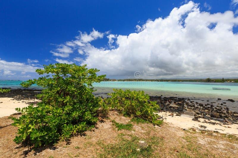 Litoral da praia azul da baía, Mauritius Island, Oceano Índico foto de stock royalty free