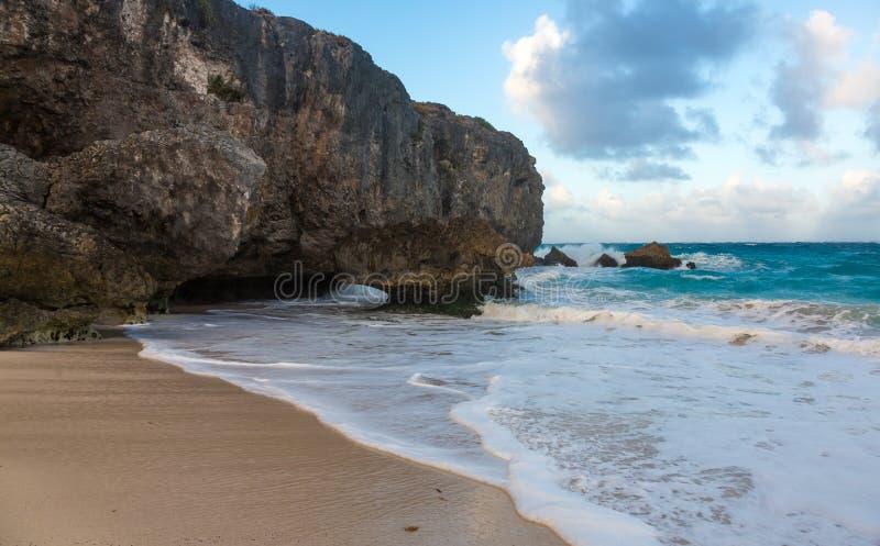 Litoral de Barbados com areia e rochas fotos de stock