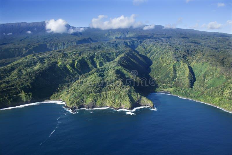 Litoral de Havaí. fotos de stock royalty free