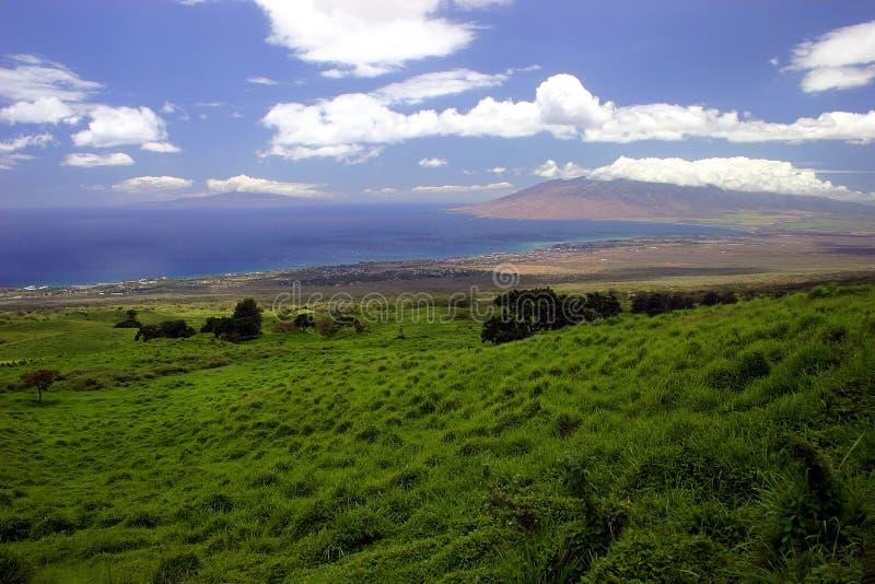 Litoral do console de Maui, Havaí foto de stock royalty free