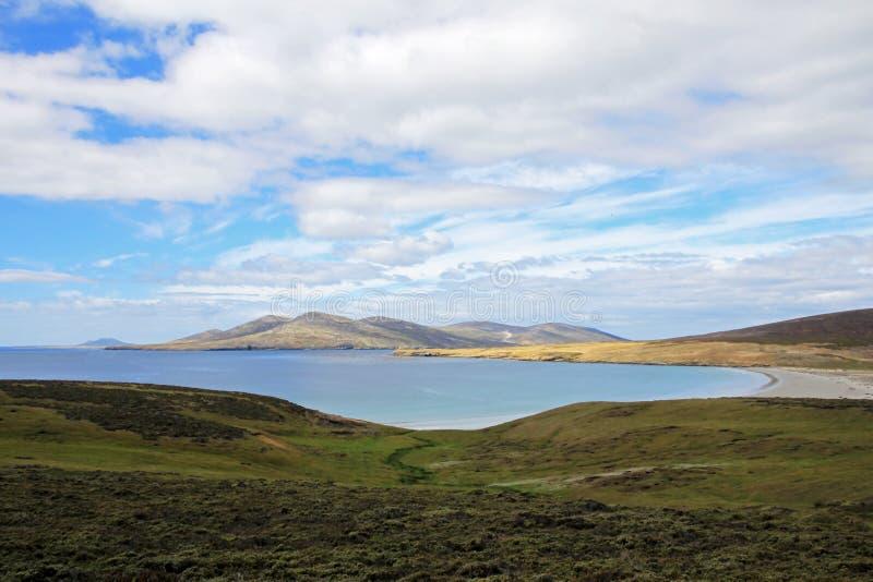 Litoral, praia na ilha de Saunders, Falkland Islands foto de stock