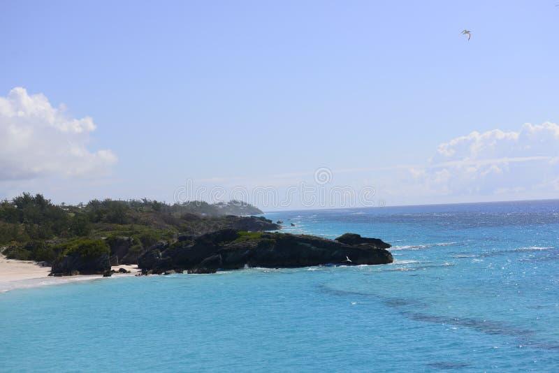 Litoral tropical imagens de stock