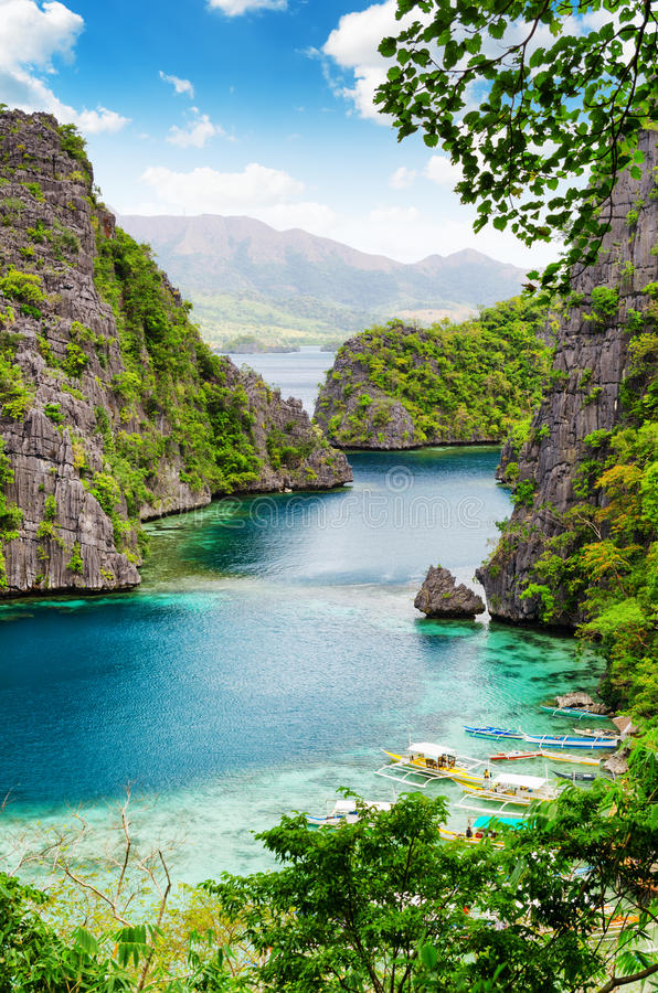 Litoral tropical Província de Palawan, Filipinas fotos de stock