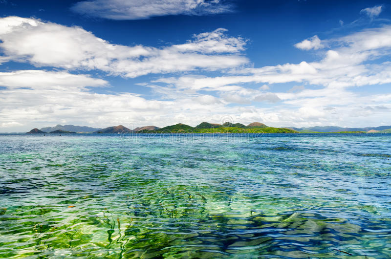 Litoral tropical Província de Palawan, Filipinas imagem de stock royalty free