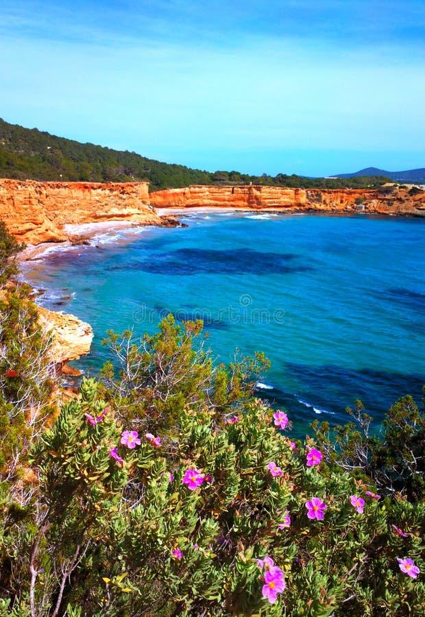 Litoral vermelho do ocre do Sa Caleta Ibiza fotografia de stock