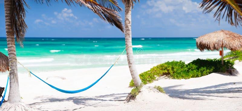 Litorale caraibico immagine stock