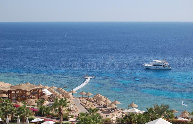 Litorale del Mar Rosso, Sharm El Sheikh, Egitto immagini stock libere da diritti