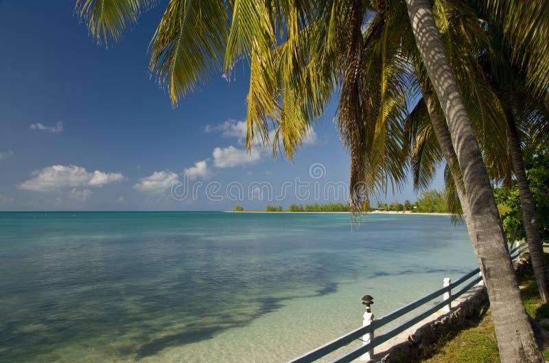 Litorale dell'isola di Anegada fotografia stock libera da diritti
