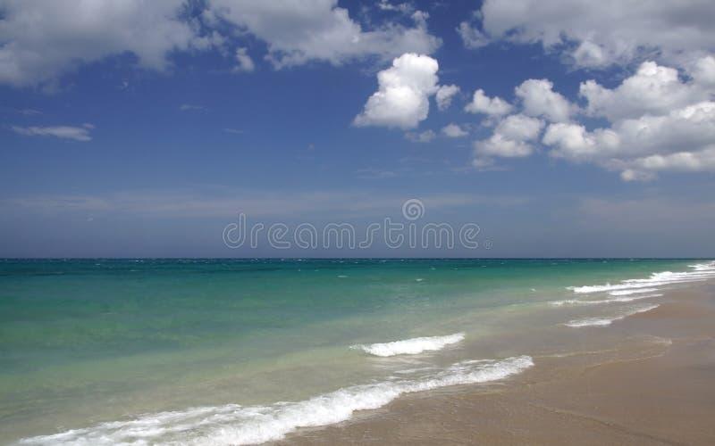 Litorale dell'oceano fotografie stock libere da diritti