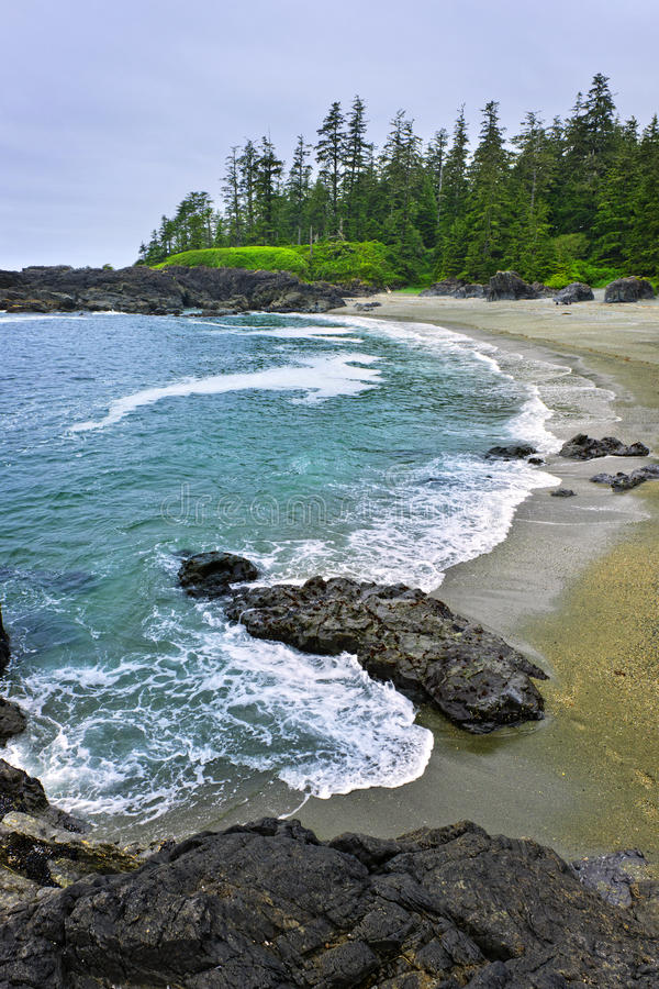 Litorale dell'Oceano Pacifico nel Canada fotografia stock