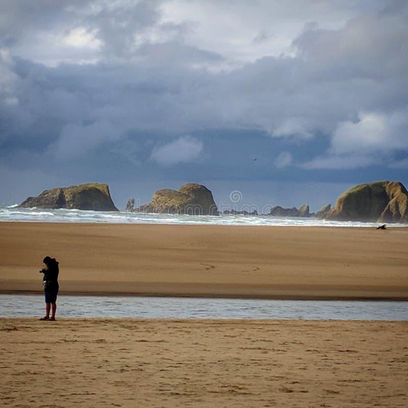 Litorale dell'Oregon fotografie stock