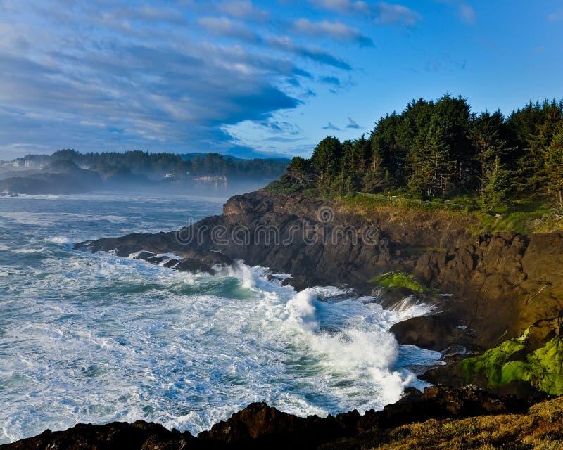 Litorale dell'Oregon immagini stock