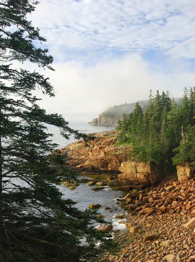 Litorale di Acadia immagine stock libera da diritti