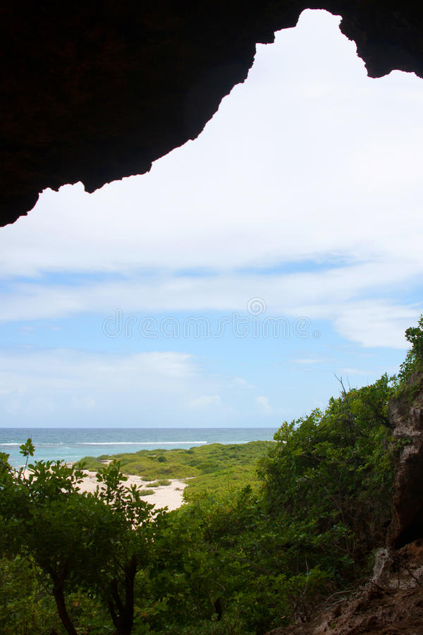 Litorale di Barbuda fotografia stock libera da diritti