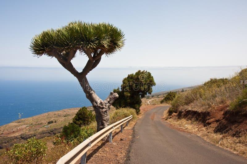 Litorale di La Palma, Isole Canarie immagini stock
