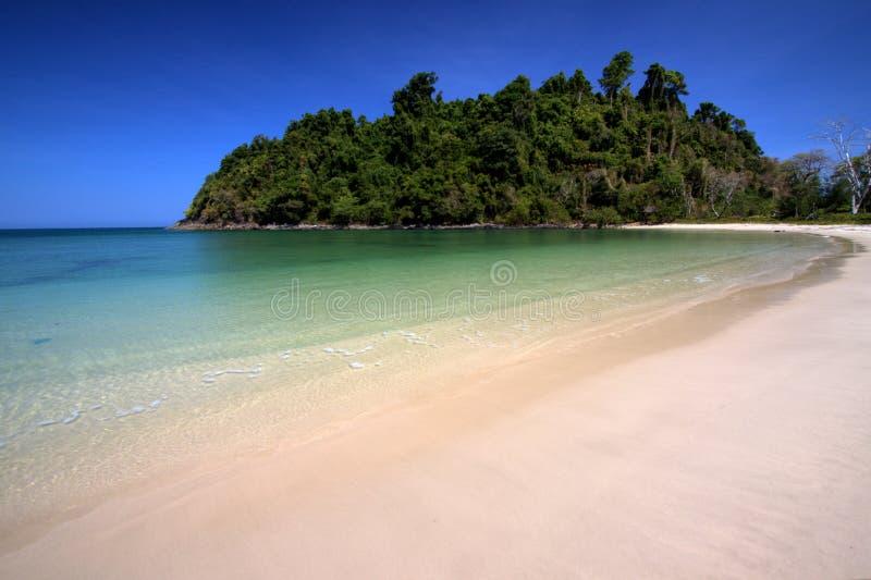 Litorale sull'isola di paradiso immagine stock libera da diritti