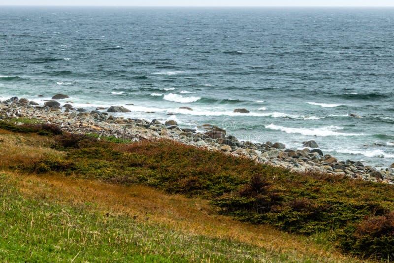 Litorali rocciosi dal bordo della strada, Gros Morne National Park, Ne fotografie stock libere da diritti