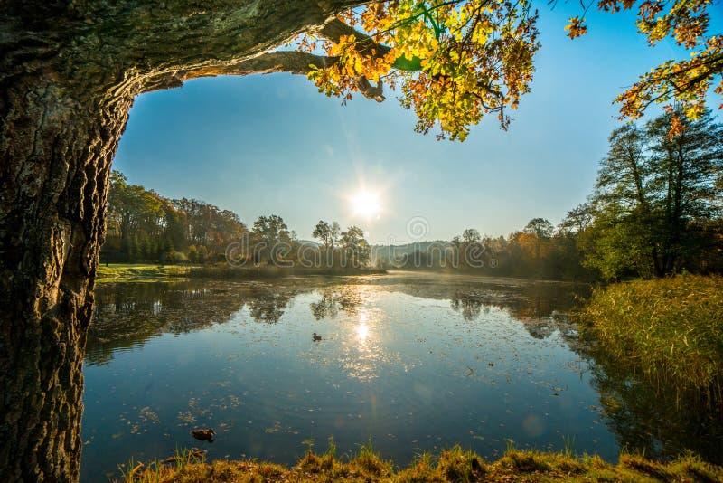Litouws landschap in daling stock fotografie