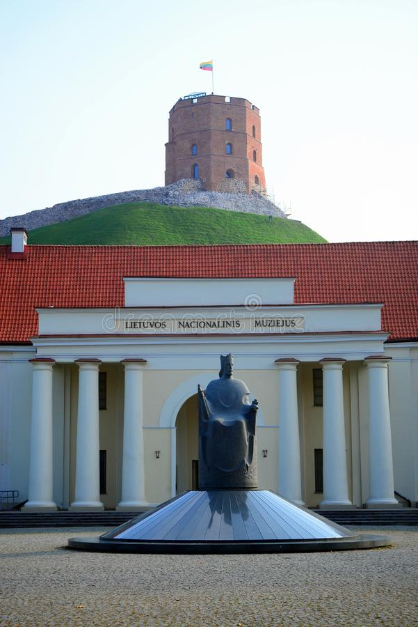 Litouws nationaal museum en beeldhouwwerk in Vilnius-stad royalty-vrije stock afbeelding