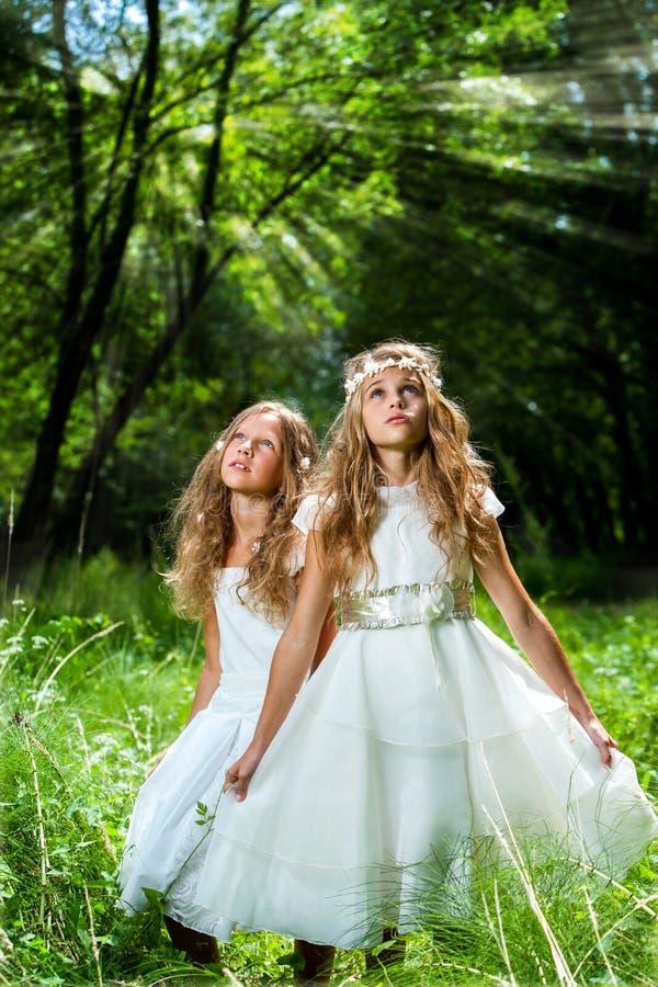 Litte Prinzessinnen, die Weißkleider im Holz tragen stockfotografie