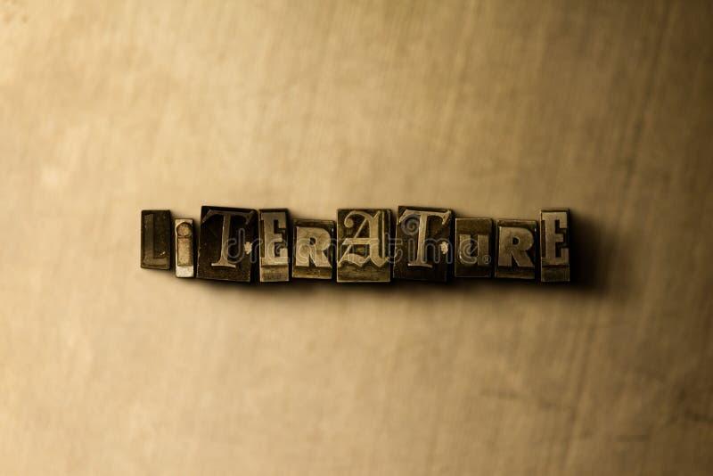 LITTERATUR - närbild av det typsatta ordet för grungy tappning på metallbakgrunden royaltyfri illustrationer