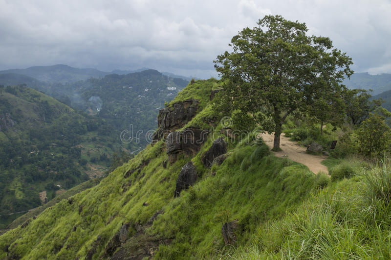 Little Adams peak panorama, Ella, Sri Lanka. Mountain covered with green grass and a tree view to the mountains with clouds stock photos