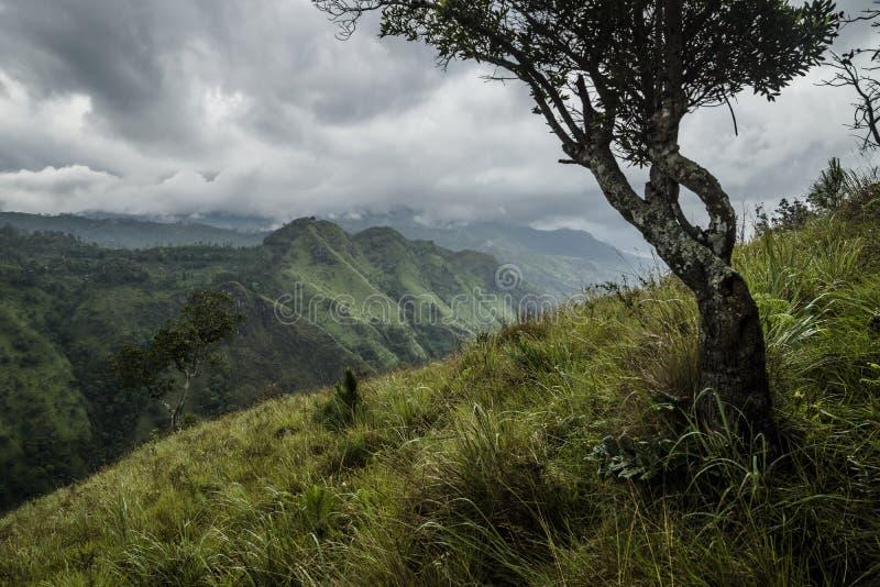 Little Adams peak in stormy weather, Ella, Sri Lanka. View to Little Adams Peak in rainy, stormy weather in Ella stock photography